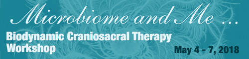 Microbiome and Me - Advanced Craniosacral Therapy Workshop, May 4 - 7, 2018